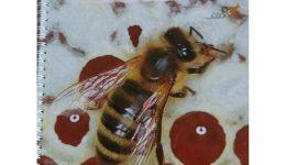 čebelarski dvevnik_r