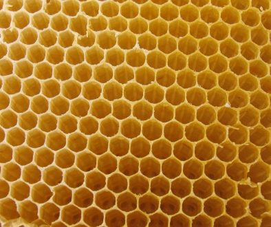 4367344-honeycomb-wallpaper