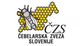 czs111 (2)